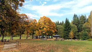Podzim na Šumavě