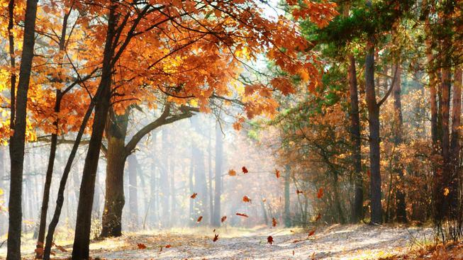 Podzimní počasí