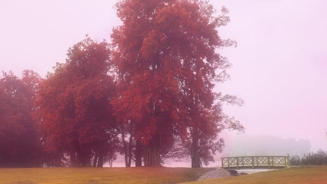 Podzimní počasí (ilustrační fotografie)