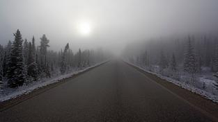 Mlha na silnici