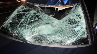 Smrtelná dopravní nehoda