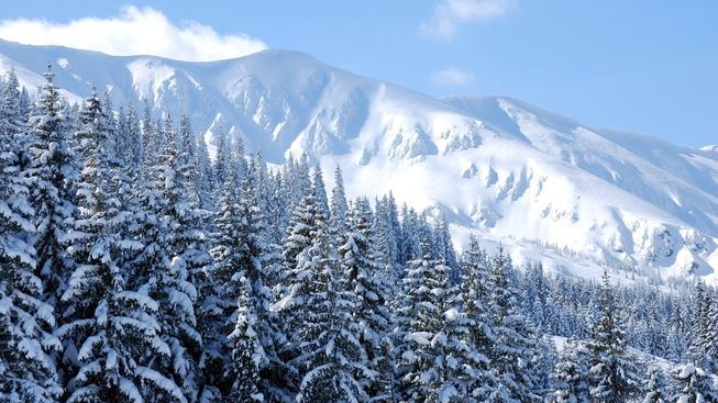 Chopok, Nízké Tatry