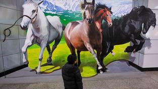 Rok koně, Čína (ilustrační fotografie)