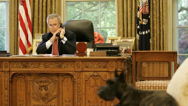 George W. Bush a Miss Beazley