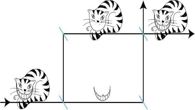 Vědci pozorovali kvantový paradox kočky Šklíby