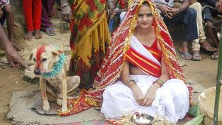 Osmnáctiletá indická dívka se svým psím ženichem