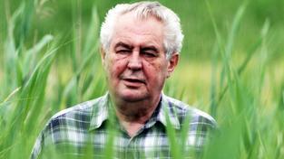 Český prezident Miloš Zeman v trávě