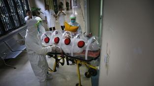 WHO údajně v prevenci proti viru ebola selhala.