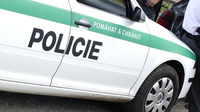 Česká policie, ilustrační snímek