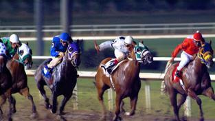 Sport vede, i když už se dávno nesází jen na koňské dostihy