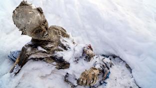 Těla alpinistů pohřešovaných 55 let našli jiní horolezci