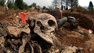Během masakru zemřelo více než 8000 bosenských muslimů