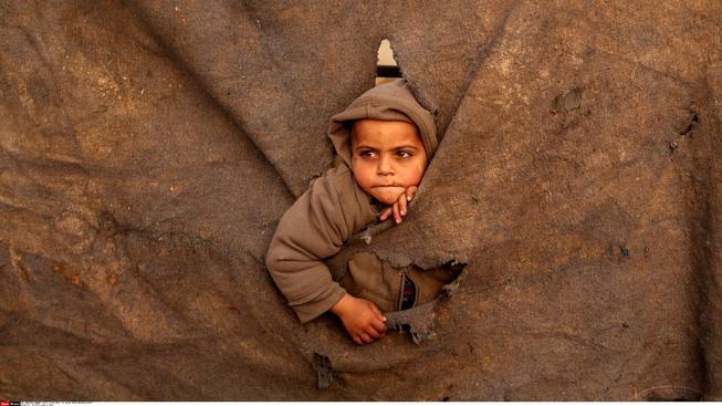 Izraelští vojáci zatknou ročně až 700 dětí, většinou kvůli házení kamenů