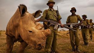 Sudán se svými bodyguardy
