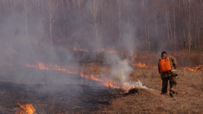 Sibiř zasáhly rozsáhlé požáry