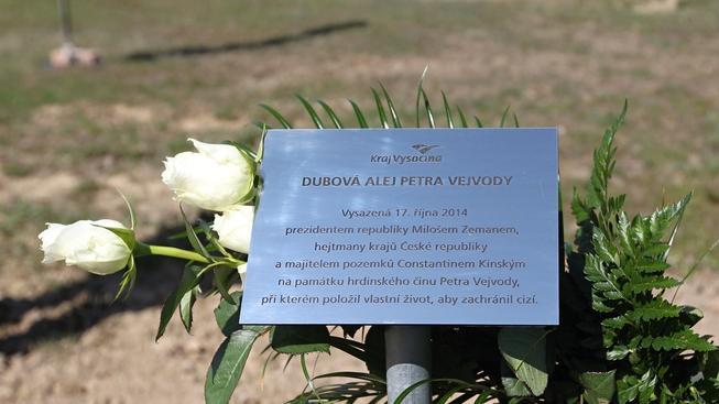 Na památku zabitého studenta Petra Vejvody vznikla v Novém Veselí dubová alej s jeho jménem