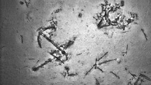 Místo trosek letu MH370 našli pátrači vrak lodi z 19. století
