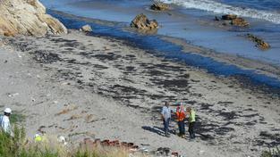 Záchranáři se pokoušejí vyčistit pobřeží