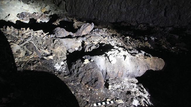 V katakombách našli archeologové osm milionů psích mumií