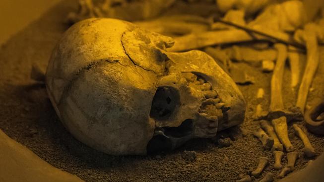 U ostatků švédského biskupa ze 17. stol. vědci objevili mumifikované embryo. Ilustrační foto