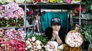 Květiny z Nizozemí jsou v Rusku zakázané, prý kvůli škůdcům