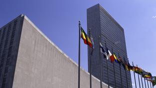 OSN nyní sídlí v New Yorku