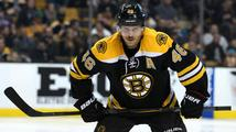 Krejčí rozhodl o výhře Bostonu, Neuvirth dál vládne statistikám