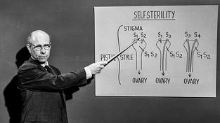 """Sterilizaci státy využívaly k tomu, aby se zbavily části společnosti s """"nevhodnými geny"""" (ilustrační snímek)"""