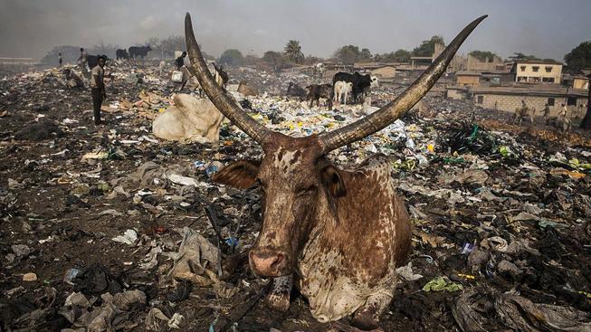 Agbogbloshie je jedním nejznečištěnějších míst na světě