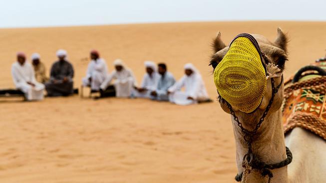 Prodat písek pouštním zemím není tak těžké, jak se může zdát (ilustrační snímek)