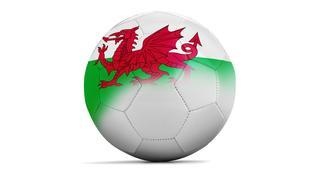 Wales - soupiska fotbalové reprezentace pro Euro 2016
