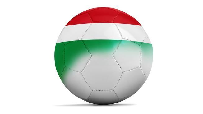 Maďarsko - soupiska fotbalové reprezentace pro Euro 2016
