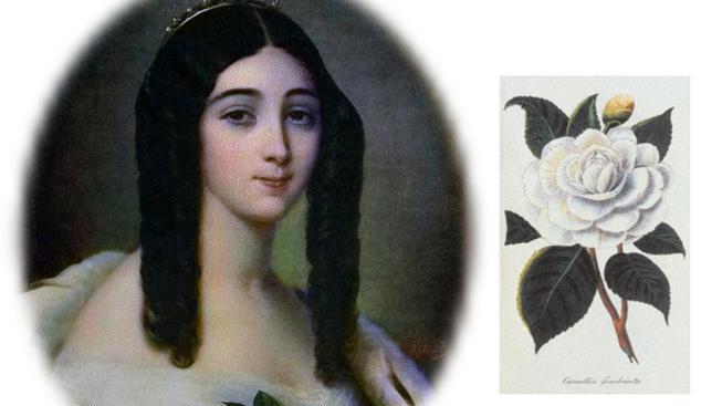 Marie Duplessis jako Dáma s kaméliemi
