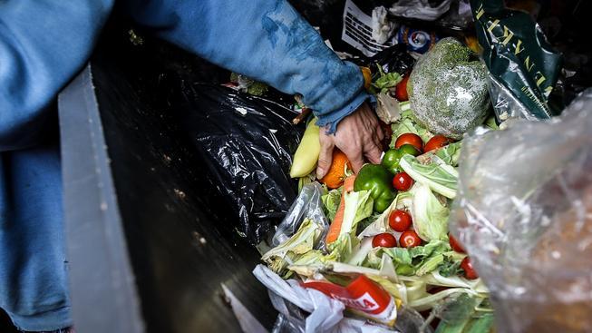 V Česku se průměrně zbytečně vyhodí 80 kilo jídla na osobu. Ilustrační snímek