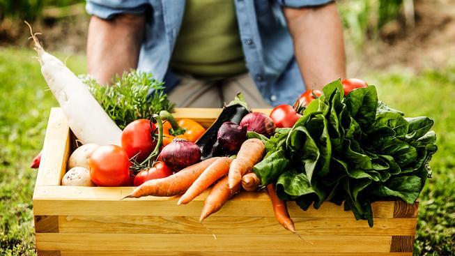 I váš zelinář, který pěstuje vše zásadně bio, má pole plná geneticky upravené zeleniny a ovoce. Ilustrační snímek