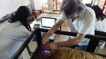 Restaurování mumie egyptské princezny Naishu