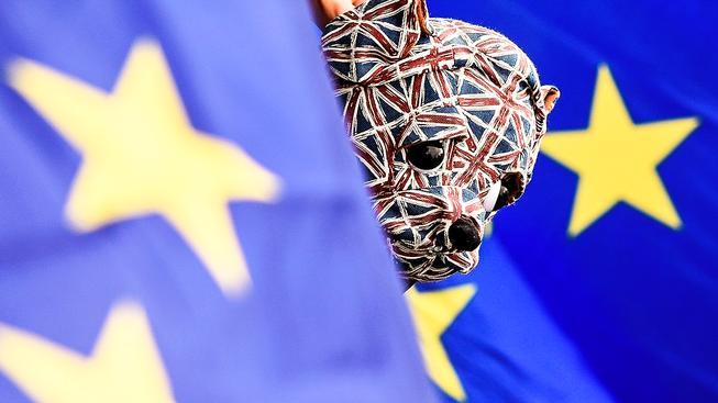 Plyšový anglický buldok a vlajky EU