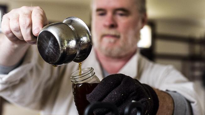 Javorový sirup je kanadské tekuté zlato, jeho sezona je ale každý rok nejistá. Ilustrační foto