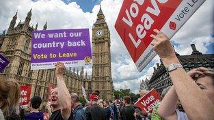 Nejviditelnějším příkladem evropského populismu je podle organizace vítězství odpůrců brexitu