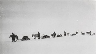 Slavná britská výprava na Antarktidě v roce 1911. Ilustrační snímek