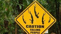 Pozor na zvířata - i na ta exotická