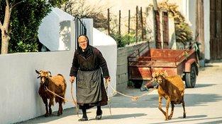 Kréťané se těší pevnému zdraví a dlouhověkosti. Ilustrační snímek