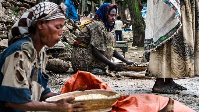 Etiopie je v současnosti agrární zemí, její vláda by ji však raději viděla jako zpracovatelské centrum