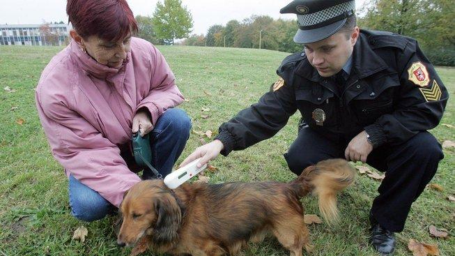 Kontrola načipovaného psa