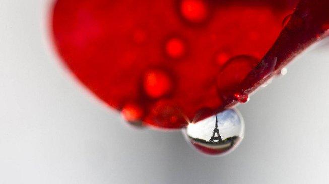 Fotograf samozřejmě zachytil i nejslavnější pařížskou památku - Eiffelovu věž