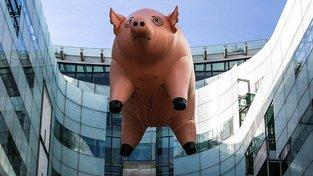 Pinkfloydovské prase v sídle BBC