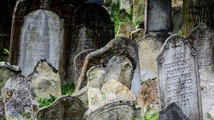 Boskovický židovský hřbitov je jeden z největších v Česku