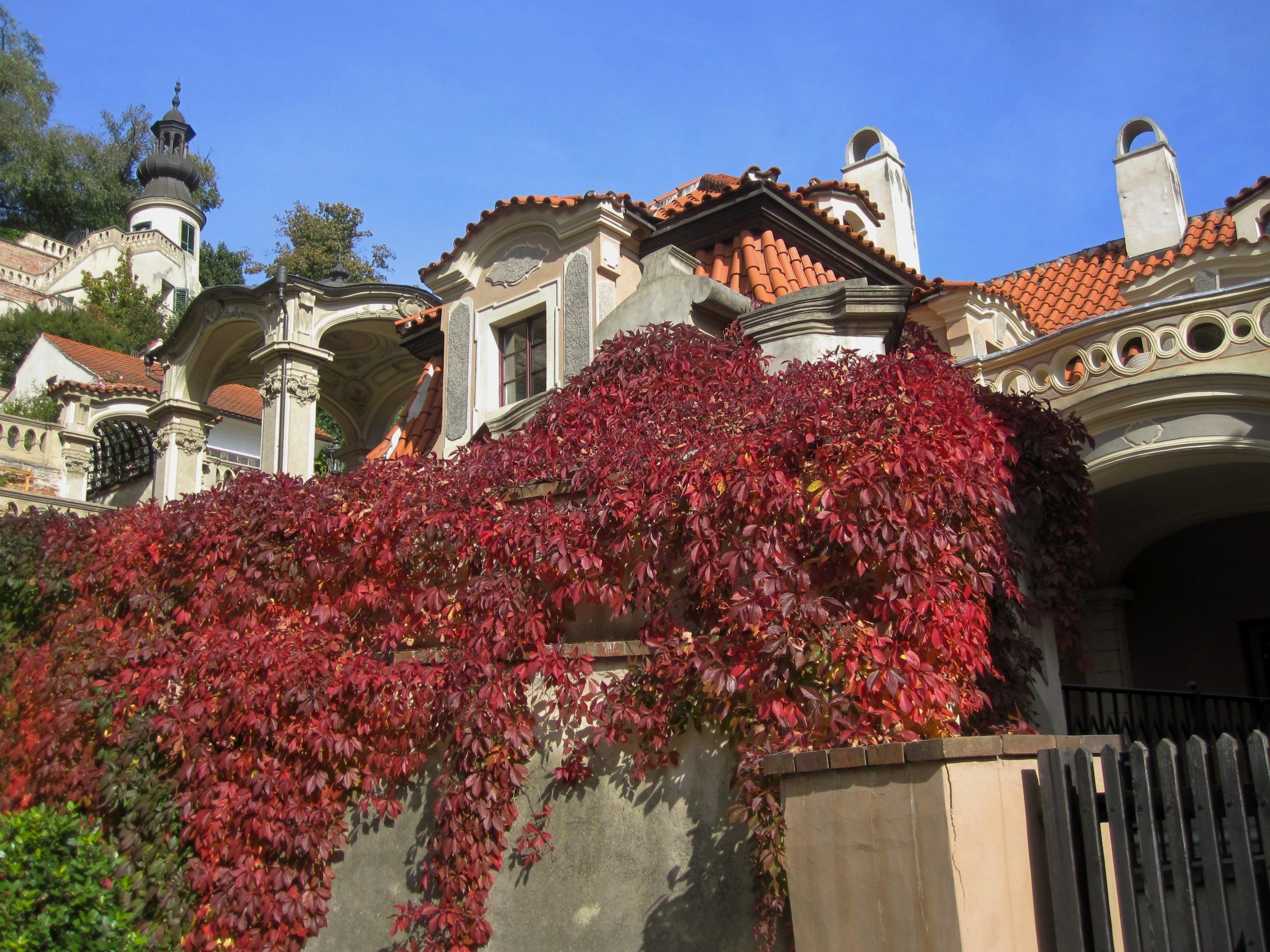 Palácové zahrady pod Pražským hradem