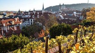 Palácové zahrady pod Pražským hradem září na podzim všemi barvami
