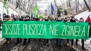 Protesty proti těžbě dřeva v Bělověžském pralese